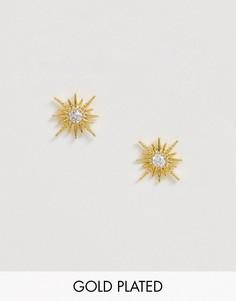 Серьги-гвоздики Shashi Celestine-Золотой