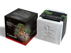 Растение ЭкоДом Вырасти Бонсай дома Гранат В дизайнерском кубике ручной работы