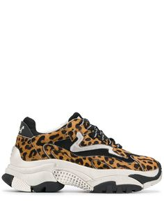 ASH кроссовки Addict с леопардовым принтом