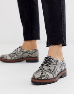 Туфли на шнуровке со змеиным принтом ASOS DESIGN-Бежевый
