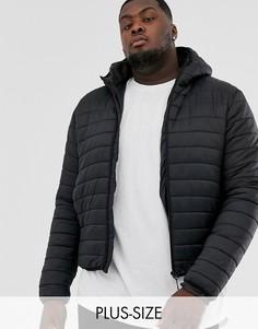 Черная дутая куртка с капюшоном Brave Soul Plus-Черный