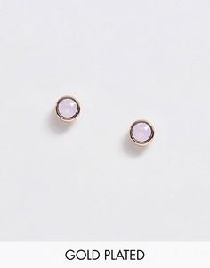Золотистые серьги-гвоздики с розовым кристаллом Swarovski от Ted Baker-Золотой