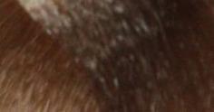 Constant Delight, Масло для окрашивания волос Olio Colorante Констант Делайт (палитра 56 цветов), 50 мл 9.0 экстра светло-русый