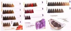 Hair Company, Палитра оттенков Inimitable Color (79 тонов)