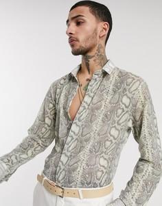 Кремовая сетчатая рубашка со змеиным принтом Twisted Tailor-Кремовый