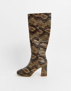 Кожаные сапоги на каблуке со змеиным принтом Topshop-Бежевый