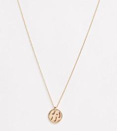 Эксклюзивное золотистое ожерелье с подвеской в форме диска Accessorize-Золотой