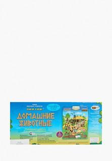 """Игрушка Знаток - Электронный звуковой плакат """"Домашние животные"""""""