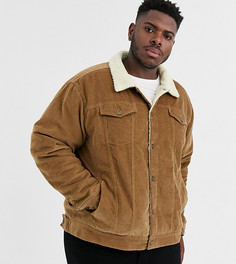 Коричневая вельветовая куртка с подкладкой из искусственного меха Le Breve Plus-Коричневый
