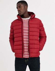 Дутая куртка на молнии с капюшоном French Connection-Светло-коричневый
