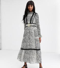 Платье макси с кружевной вставкой, леопардовым принтом, ремнем и пряжкой ASOS DESIGN Tall-Мульти