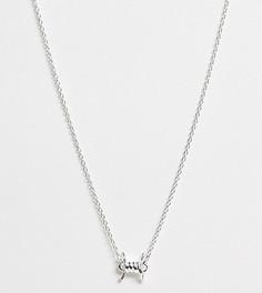 Серебряное ожерелье с подвеской ASOS DESIGN-Серебряный