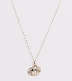 Золотистое ожерелье с подвеской-ракушкой и стразами Accessorize-Золотой