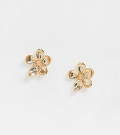 Золотистые серьги-гвоздики Pieces-Золотой