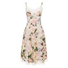 Платья Dolce & Gabbana Платье с принтом Dolce & Gabbana