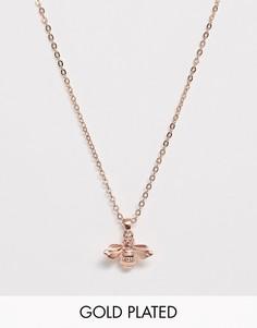 Ожерелье цвета розового золота с подвеской в виде шмеля Ted Baker-Золотой