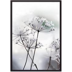 Постер в рамке Дом Корлеоне Цветы-зонтики 50x70 см