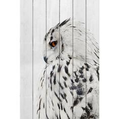 Картина на дереве Дом Корлеоне Белая сова 01-0366-40х60