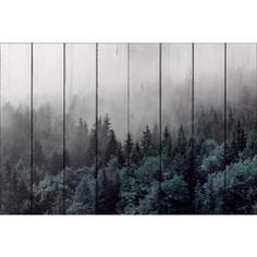 Картина на дереве Дом Корлеоне Лес 30x40 см