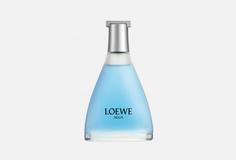 Категория: Туалетная вода Loewe