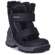 Утеплённые сапоги ECCO