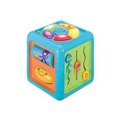 Многосторонний познавательный кубик WinFun