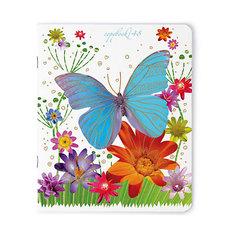 Тетрадь Праздник. Бабочки, 48 листов, клетка, 5 шт., рисунок в ассортименте Альт