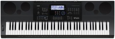 Синтезатор Casio WK-6600 (черный)