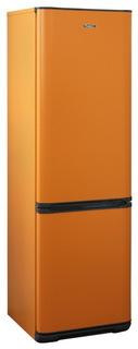 Холодильник Бирюса T360NF (оранжевый)