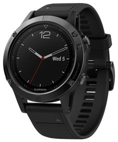 Спортивные часы Garmin Fenix 5 Sapphire с черным ремешком (черный)