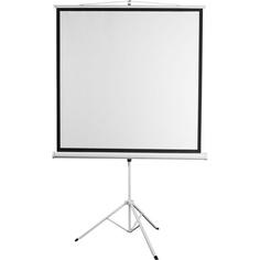 Экран для проекторов Digis DSKD-1108