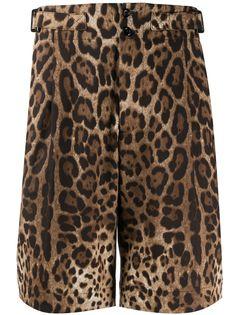 Dolce & Gabbana шорты-бермуды с леопардовым принтом