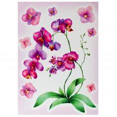 Наклейка «Акварельная орхидея» Декоретто L