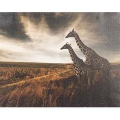 Картина на холсте «Жирафы» 40х50 см
