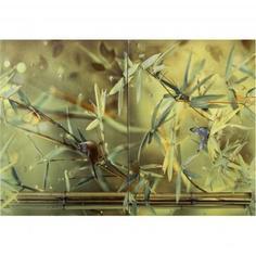 Панно «Colibri Bamboo» Сорт1 50x35 см Cersanit