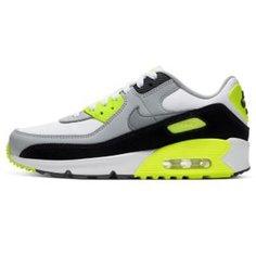 Кроссовки для школьников Nike Air Max 90 LTR
