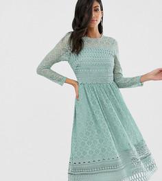 Шалфейно-зеленое кружевное премиум-платье миди приталенного кроя ASOS DESIGN Tall-Зеленый
