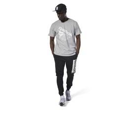Спортивные брюки Classics Graphic Pack Reebok