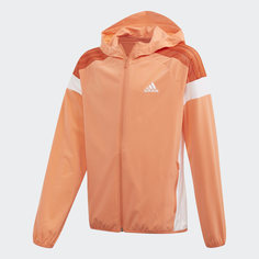 Ветровка adidas Athletics Club