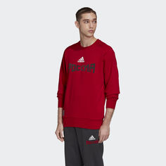 Джемпер Россия Seasonal Special adidas Performance