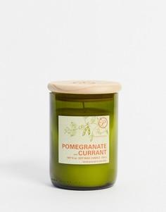 Свеча с ароматом граната и смородины ECO-Бесцветный Paddywax