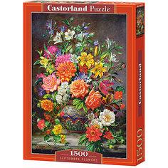 """Пазл Castorland """"Сентябрьские цветы"""" 1500 деталей"""