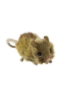Мышь землеройка Hansa
