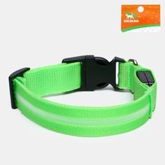 Ошейник с подсветкой, s, 38-40 см, 3 режима свечения, зеленый Пижон