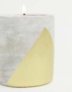 Свеча с ароматом амбры и дыма 340 г URBAN-Бесцветный Paddywax