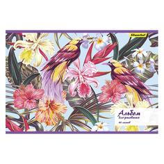 Упаковка альбомов для рисования SILWERHOF Райский сад 485730, A4, 40лист, 2 дизайна, картон, скрепка 5 шт./кор.
