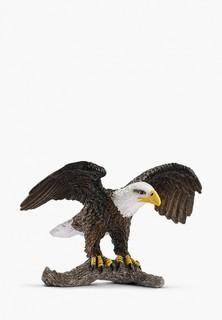 Фигурка Schleich Белоголовый орел