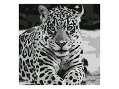 Картина по номерам Картина по номерам Котеин Ягуар 30x30cm KHM0039