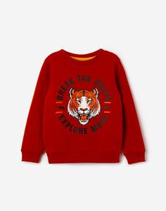 Коричневый свитшот с тигром для мальчика Gloria Jeans