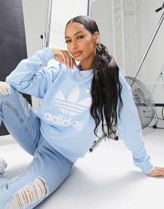 Бело-голубой свитшот с логотипом-трилистником adidas Originals-Синий